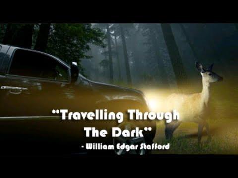 Travelling through the dark summary नेपालीमा