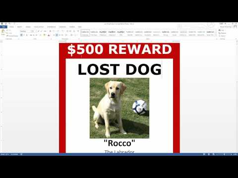 Dog Walking Flyers Templates Free Green Home – Lost Dog Flyer Examples