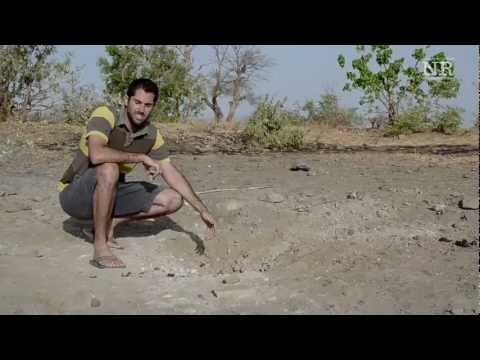 Video of NUBA REPORTS