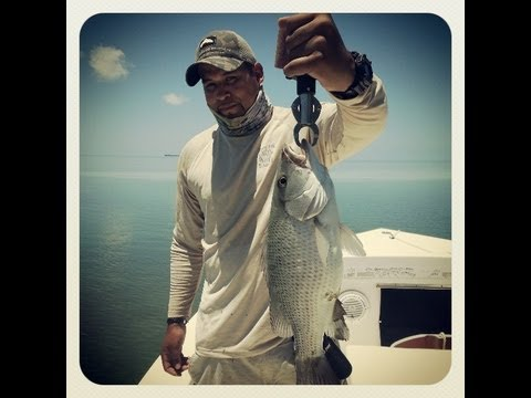 Florida - My latest fishing / vacation trip to the beautiful florida keys. Special thanks to Fishermandepot.com for supplying the fishing tackle and to Captain David I...