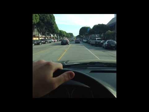 Arnold Schwarzenegger Driving by Wil Sasso