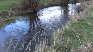 Heckfield United Kingdom  city pictures gallery : River Whitewater Heckfield March 22 2014 1