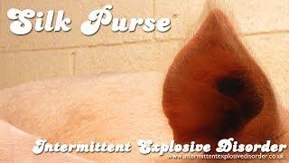 Silk Purse thumb image