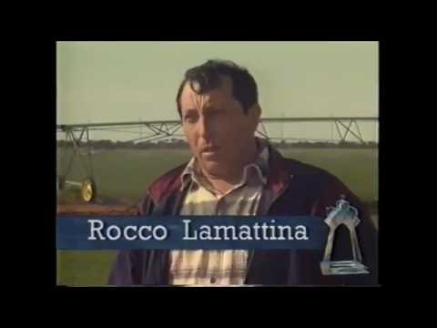 1995 Ethnic Business Awards Finalist – Non Manufacturing Category – Rocky Lamattina – Rocky Lamattina and Sons