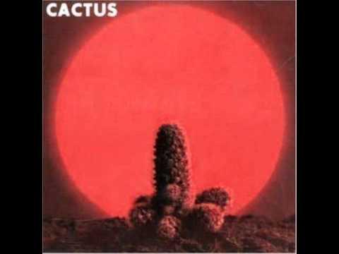 Tekst piosenki Cactus - Oleo po polsku