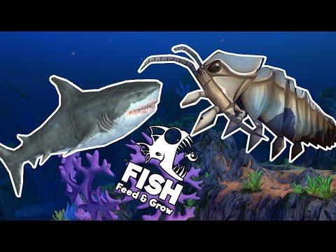 CÁ MẬP TRẮNG VS RỆP BIỂN KHỔNG LỒ!!!|Feed and Grow: FISH[23] - Thời lượng: 13:27.