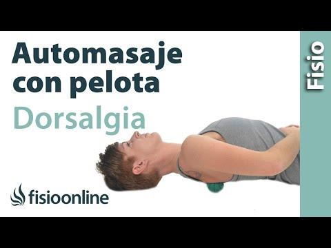 Automasaje con pelota para el dolor dorsal o dorsalgia - Relajar espalda