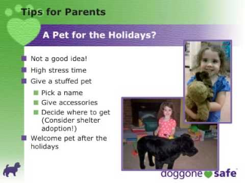 Holiday Child & Pet Safety Tips