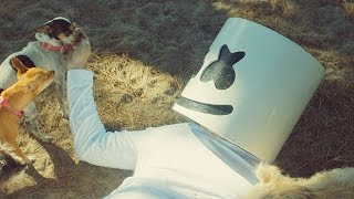 Marshmello - Ritual ft Wrabel (Official Music Video) full download video download mp3 download music download