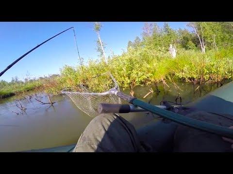 ловля щуки на реке или