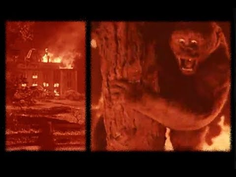 """The Burning Orphanage Scene From """"MIGHTY JOE YOUNG"""" (1949)"""