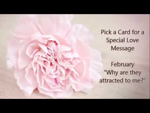 Love messages - Pick a Card for a Special Love message  Why are they attracted to me?
