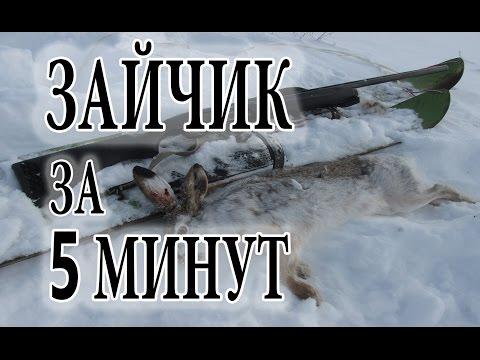 Зимние шины бриджстоун спайк 01