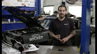 Golden Star Week to Wicked – '67 Mustang Fastback Full Episode by Motor Trend