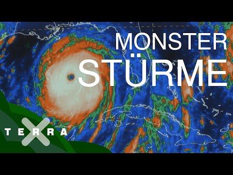 Hurrikane: So entstehen die gefährlichen Stürme