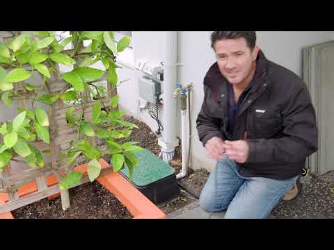 Micro Weeper Pot Irrigation | The Home Team S5 E19