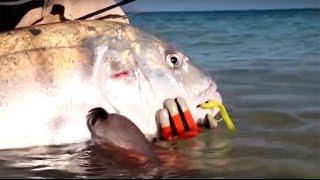 Рыбалка нахлыстом на альбулу