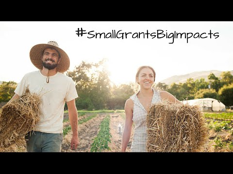 The FruitGuys Community Fund: Support Small Sustainable Farms