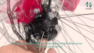 Controller, Brake Levers & Cable, Throttle, LED Light, Assembly