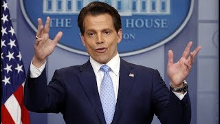 "Anthony Scaramucci is the new White House communications director. He will be filling a position left open by Mike Dubke, who resigned in May. In 2015, Scaramucci appeared on Fox Business and slammed Trump during as a ""hack"" politician. On his first day on the job as communications director, he apologized to Trump ""for the 50th time.""--------------------------------------------------Follow BI Video on Twitter: http://bit.ly/1oS68ZsFollow BI on Facebook: http://bit.ly/1W9Lk0nRead more: http://www.businessinsider.com/--------------------------------------------------Business Insider is the fastest growing business news site in the US. Our mission: to tell you all you need to know about the big world around you. The BI Video team focuses on technology, strategy and science with an emphasis on unique storytelling and data that appeals to the next generation of leaders – the digital generation."