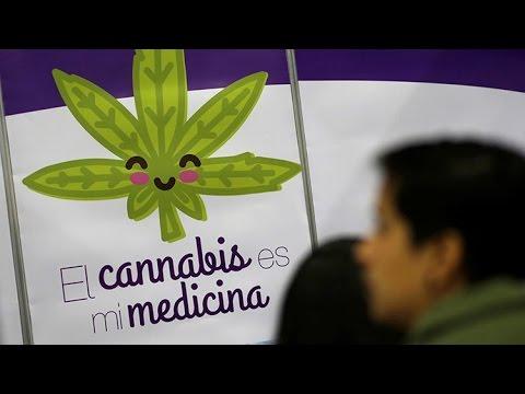El Senado mexicano aprueba el uso medicinal de la marihuana