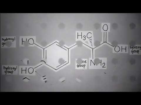 Methyldopa Structure