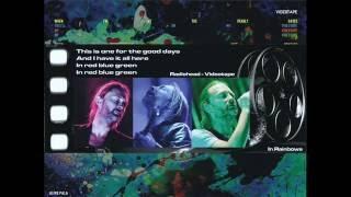 Live at Bonnaroo Festival 2006