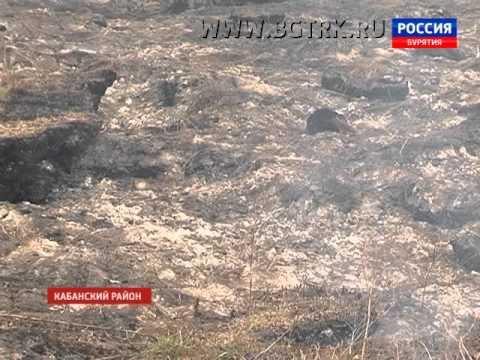 Едкий смог от горящих торфяников накрыл несколько населённых пунктов