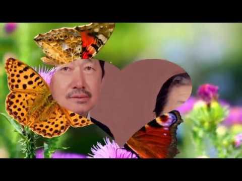 Nam hab Txiv txaj ntsig (видео)