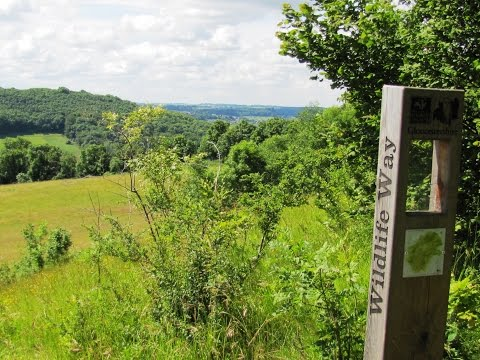 Cotswolds   Slad Valley   Elves on the Laurie Lee Wildlife Way round  | gloucestershire  Walks