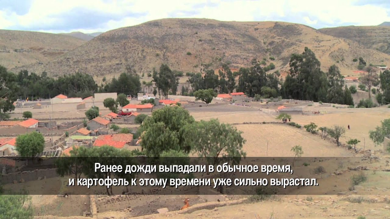Боливия: урожай в опасности