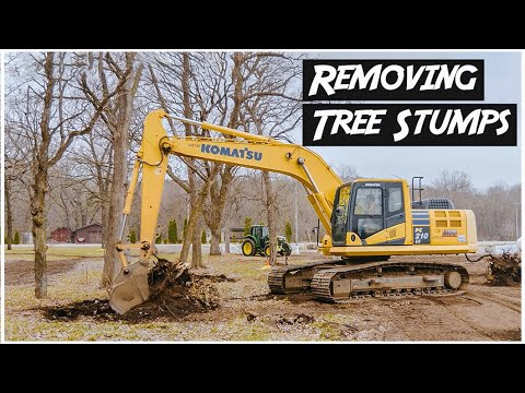 Removing Tree Stumps with Excavator | Heavy Equipment Operator