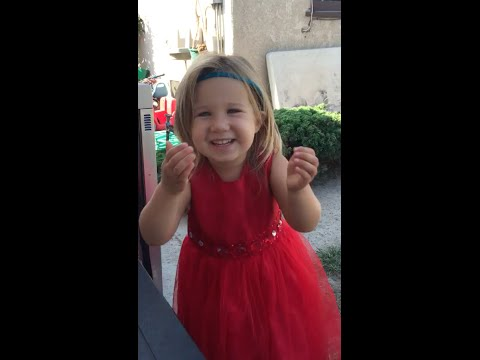 Little Girl Explains Weddings To Her Dad
