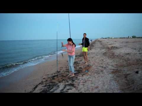 как ловить пеленгаса в мариуполе