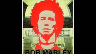 Bob Marley - Natural mystic.wmv