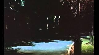 Full Movie Exploitation Sexploitation Film - The Abductors (Ginger 2) (1971) [360p] Cheri Caffaro