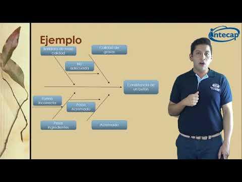 Video Diagrama de causa y efecto download in MP3, 3GP, MP4, WEBM, AVI, FLV January 2017