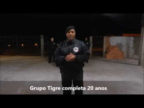 Grupo Tigre completa 20 anos