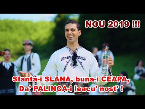 COSTEL POPA - Sfanta-i SLANA buna-i CEAPA, dar PALINCA-I leacu' nost' (OFFICIAL ETNO HIT 2019)