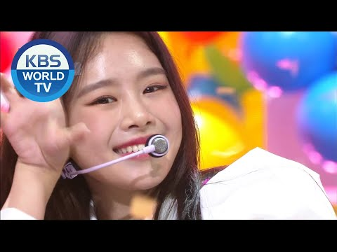 NATTY(나띠) - Teddy Bear (Music Bank) | KBS WORLD TV 201113