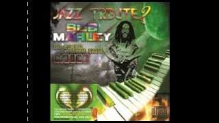 BOB MARLEY JAZZ/ REGGAE MIX  DJ SIMBA [DZISSENTS]