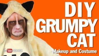 DIY Grumpy Cat Makeup and Costume How-To