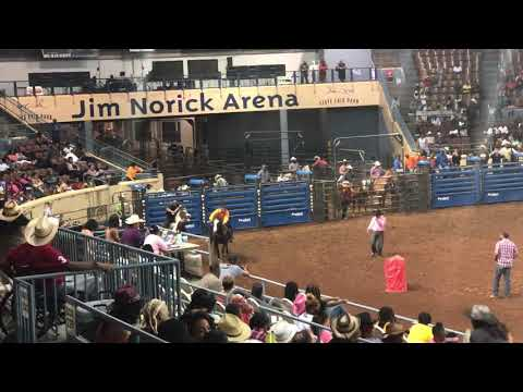 Cowboys Of Color Rodeo 2018 Pony Express 5th Race