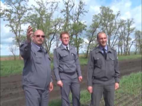 Незаконное захоронение биоотходов на территории Ростовской области
