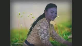 Lagu Karo Melayu Musik Remik