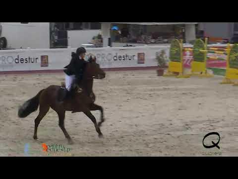 CAMPEONATO DE ESPAÑA DE MENORES DE SALTO 2019.CECYL. 19ABRIL. JUVENIL 0