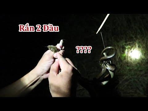 Thăm Câu Cá Lóc Và Con '' Rắn 2 Đầu ''??? | Miền Tây Sông Nước - Thời lượng: 27 phút.
