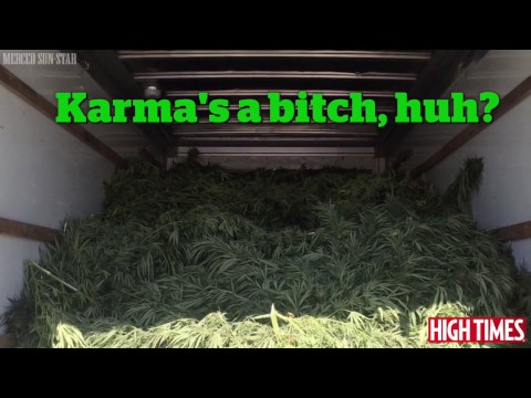 U-Haul Filled With Weed Seized By California Police
