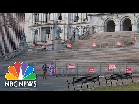 Single Pro-Trump Demonstrator Protests At New York State Capitol On Inauguration Day | NBC News NOW