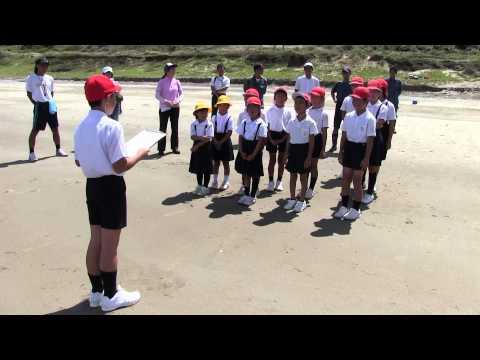 種子島の学校活動:岩岡小学校ウミガメ放流体験